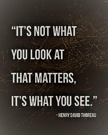 see vs look